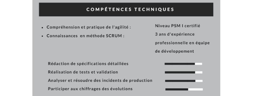 comp u00e9tences cv   informatiques  techniques  niveau de langue
