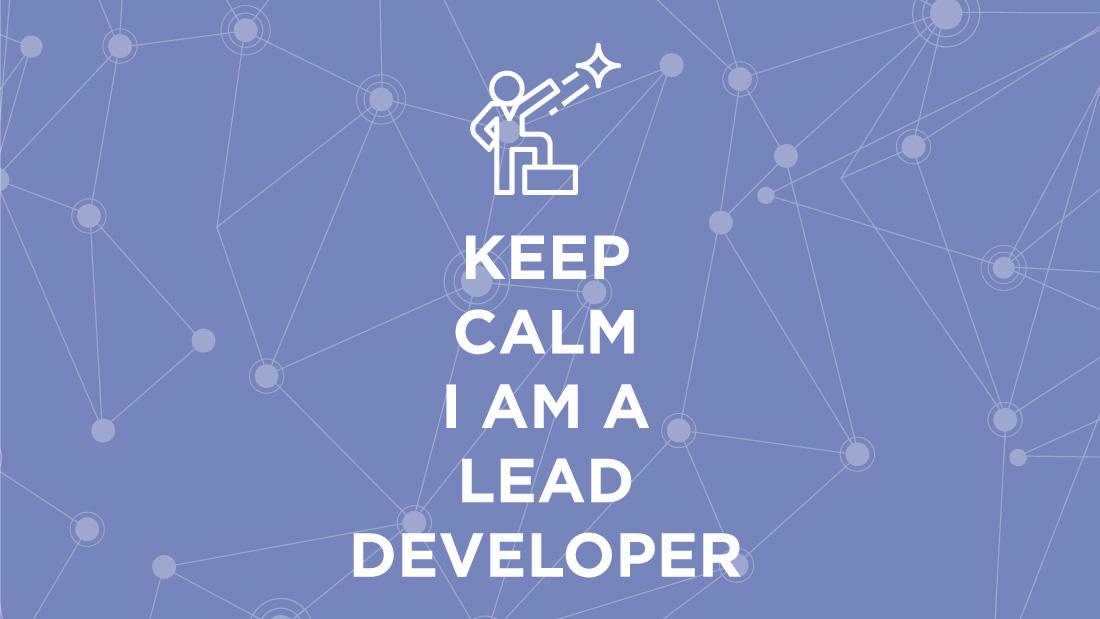 Lead Developer Fiche Métier