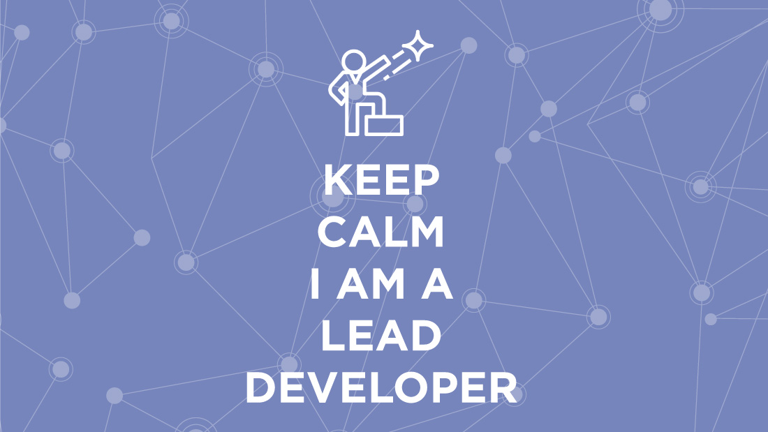 Lead developer