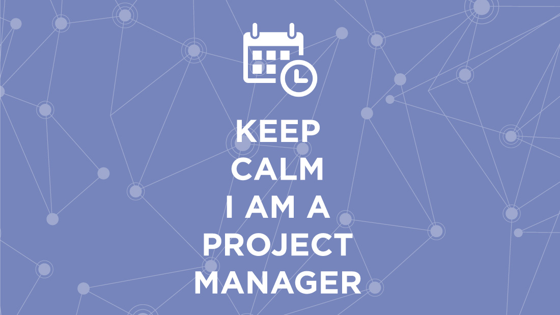 Software development project manager